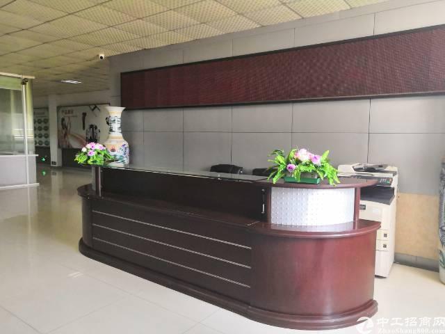 沙井共和新出楼上1000平带装修厂房