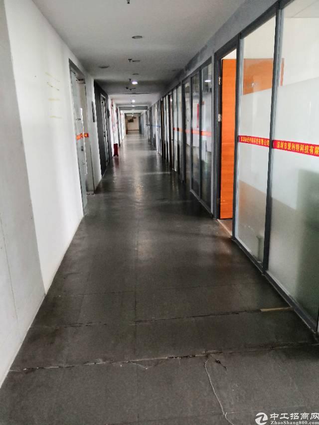 西丽关口新出楼上800平带装修厂房出租-图3