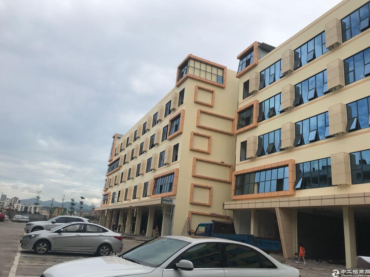 布吉丹竹头新出独院电商园写字楼200平起租(大小可分)