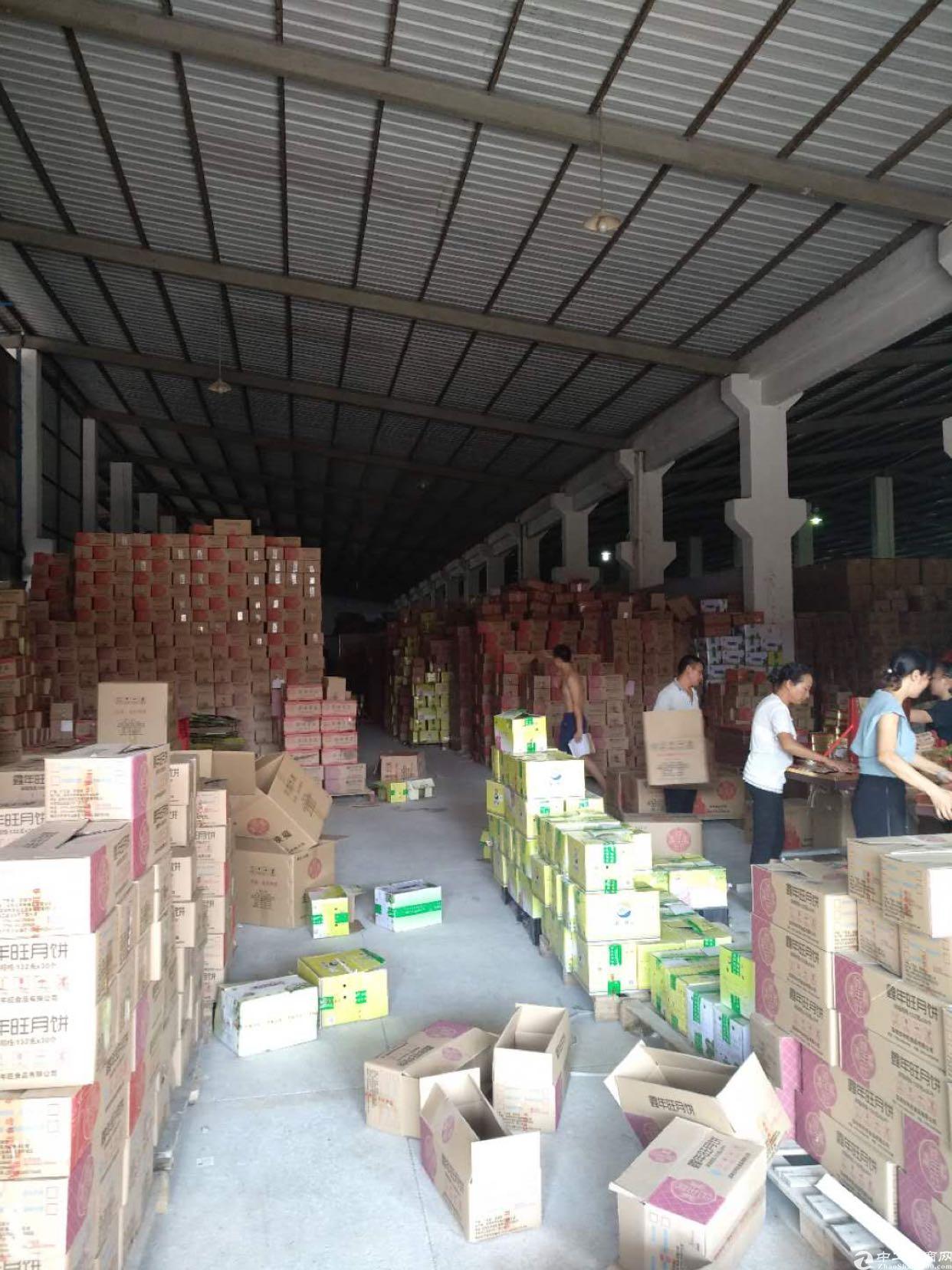 坪山标准物流仓4200平带卸货平台层高八米