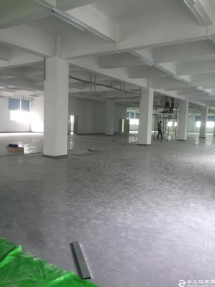 龙华大浪商业中心新出独栋10000平大小可分割