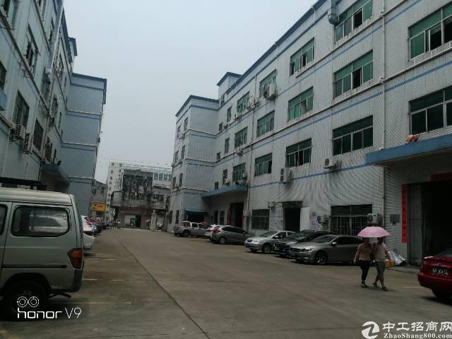 公明新出原房东楼上2080平米带豪华装修厂房出租