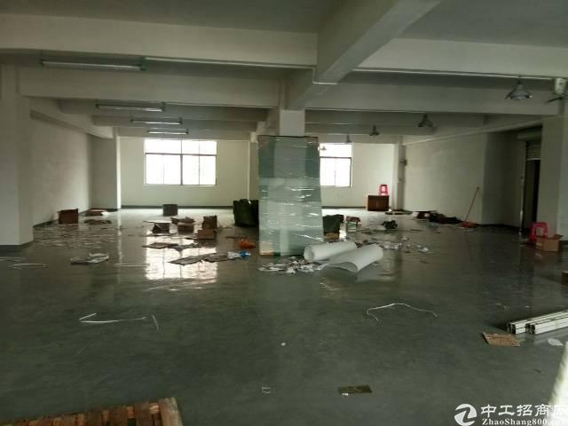 厦边大坂地车管所旁已空出楼上586平带装修办公室厂房招租
