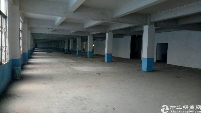 广州市新塘新出原房东独门独院厂房出租。