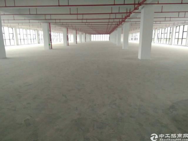 龙岗坪地2000平喷淋厂房3楼带3吨电梯出租
