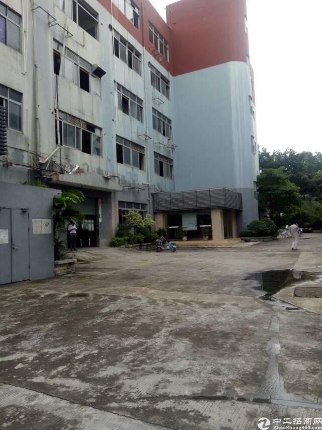 明包!明包厂房!深圳附近东莞桥头新出厂房36000平方可包租