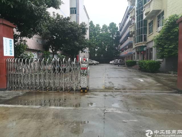 龙岗精装修独院厂房1000招租