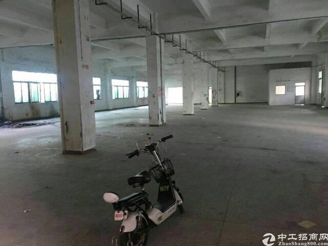 横岗横坪公路边厂房一楼1450平,6.2米高,空地大,