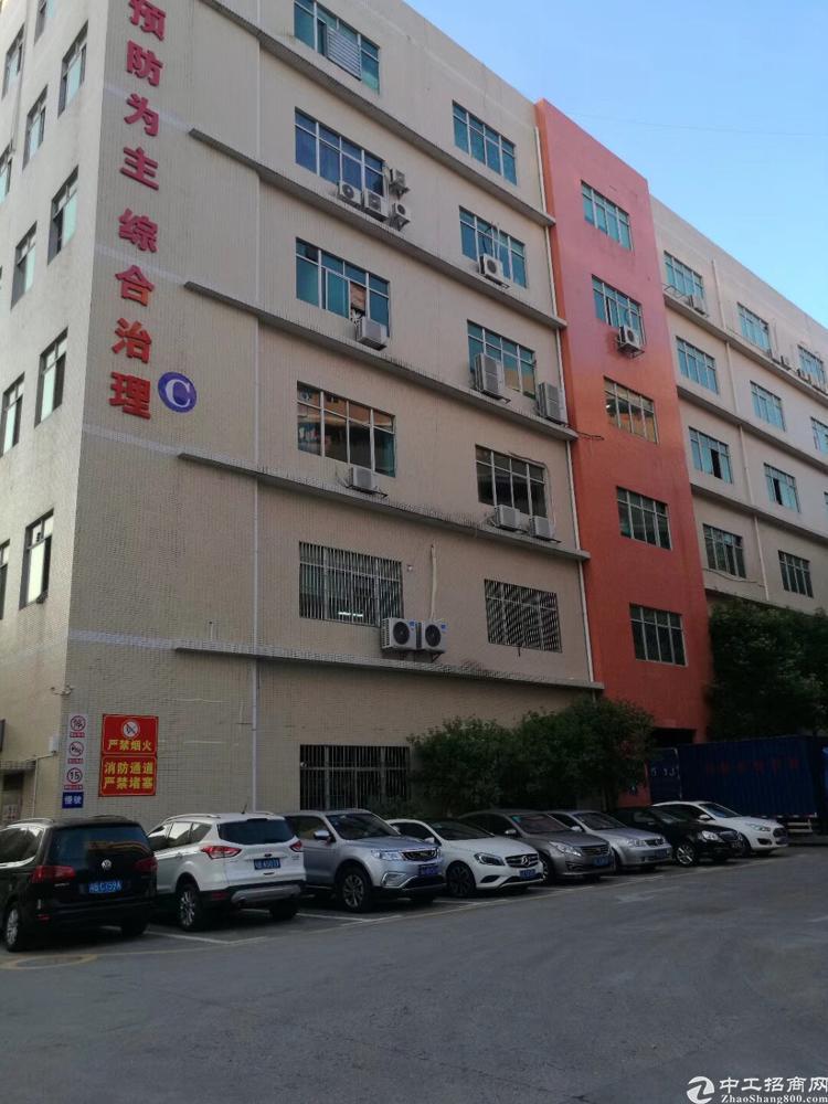 龙华大浪华荣路边3楼一整层3000平米,带装修,2台3吨货梯