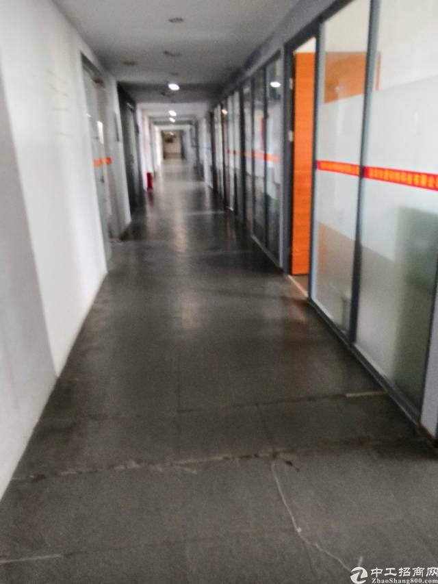 西丽关口新出楼上800平带装修厂房出租-图2