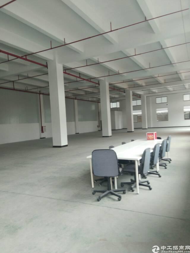 标准厂房 面积4600平方  租金18元