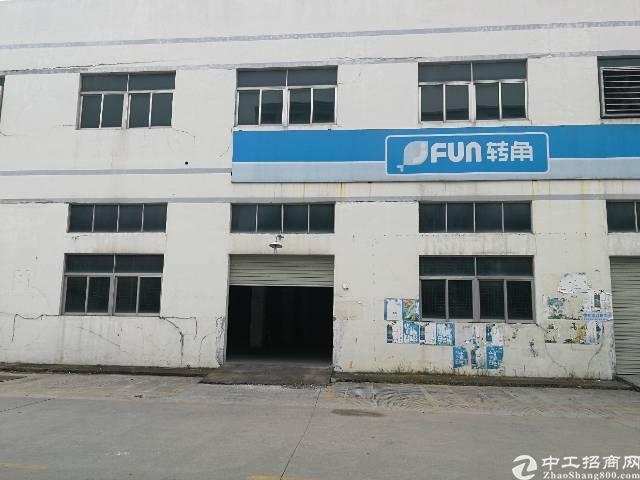 凤岗镇金凤凰新出带办公室、消防喷淋标准厂房1楼1400平