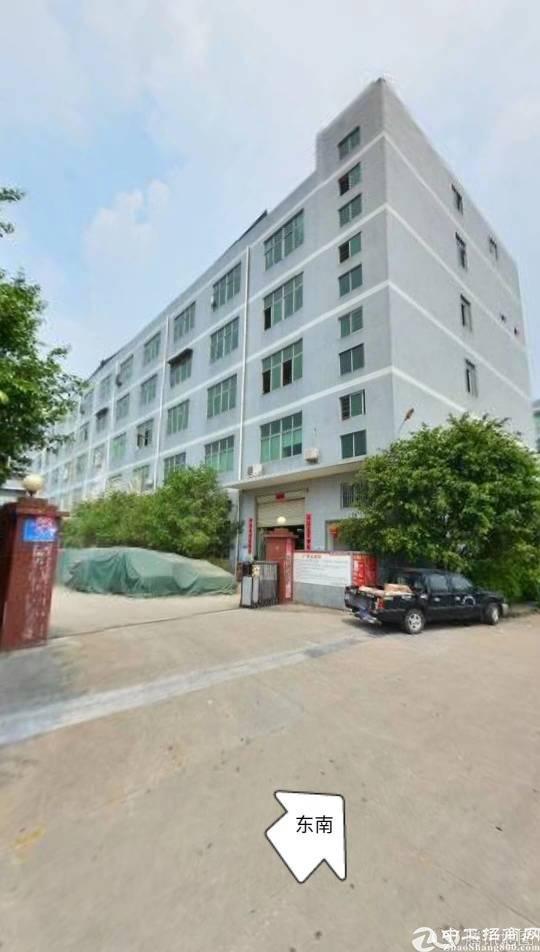 龙岗坪地红本独院厂房11000平米,可分租