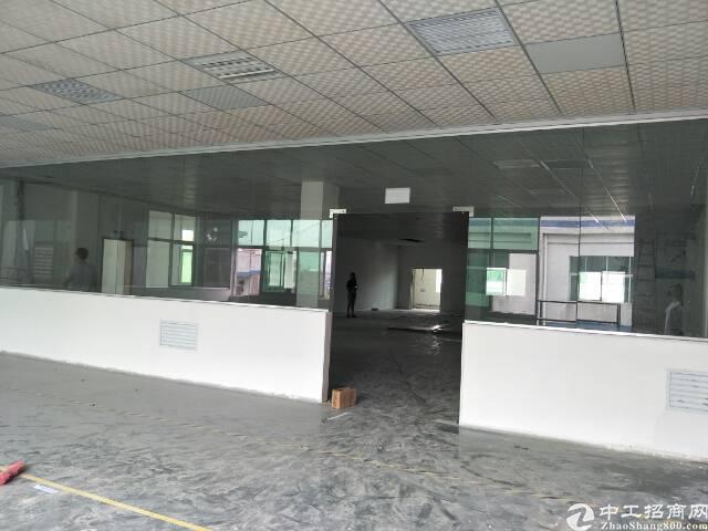 坪山石井社区新出楼上1266平带精装修,有现成办公室