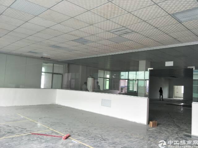坪山石井社区新出楼上1500平带精装修,有现成办公室