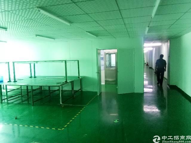 福永和平新出楼上1700平整层带装修厂房