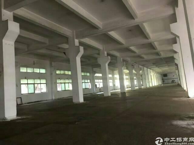 公明镇南光高速原房东红本一楼2000平米厂房出租