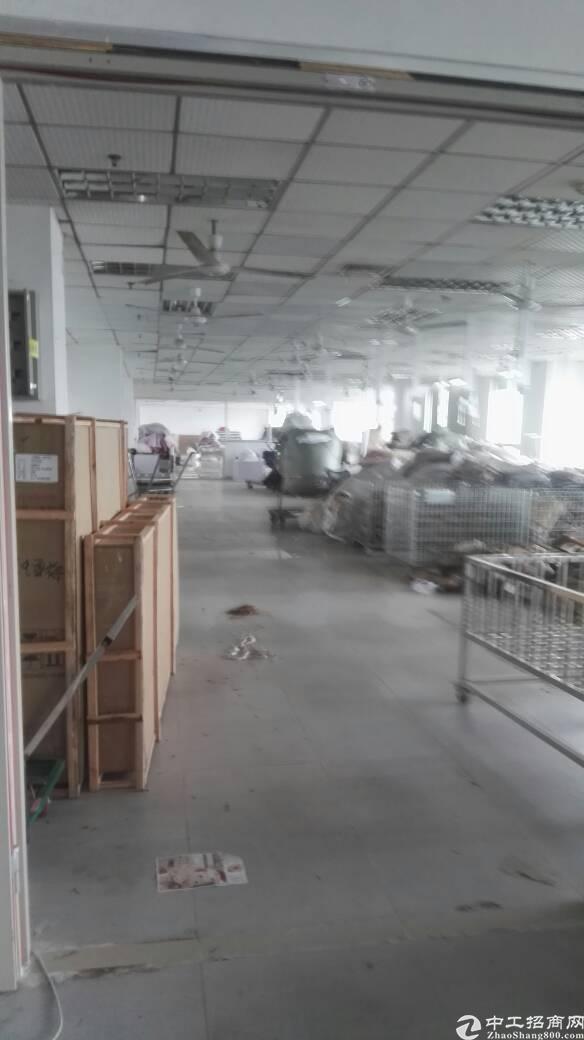 布吉上雪科技园新出2000平原房东标准厂房出租