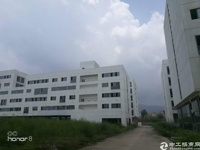 靠近大鹏56000平花园独院厂房招租