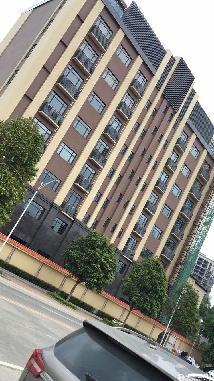 龙溪最新商业地段办公楼