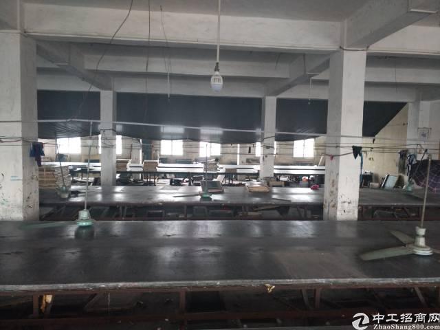 寮步镇华南工业城新出独院厂房出租可分租