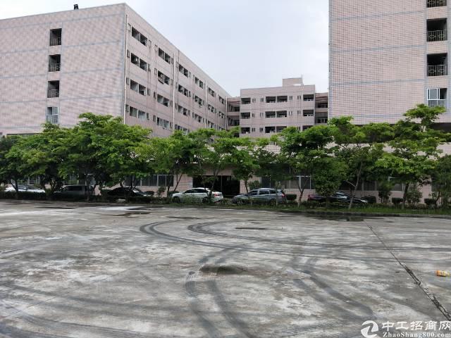 宿舍10000空地15000平米出租,适合做拓展培训