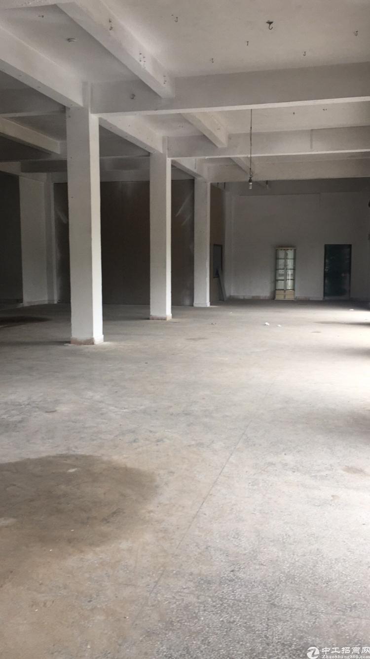 大朗新马莲大路边600平方,6个门面,可做铺面,生产,仓库等