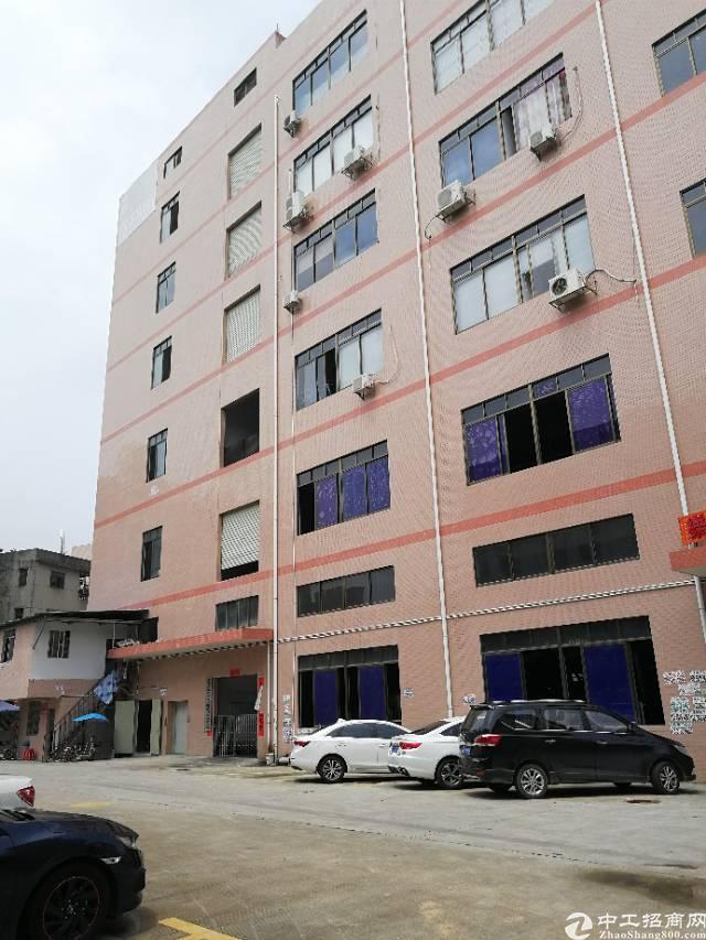 凤岗新出五楼1700平米带装修办公室标准厂房