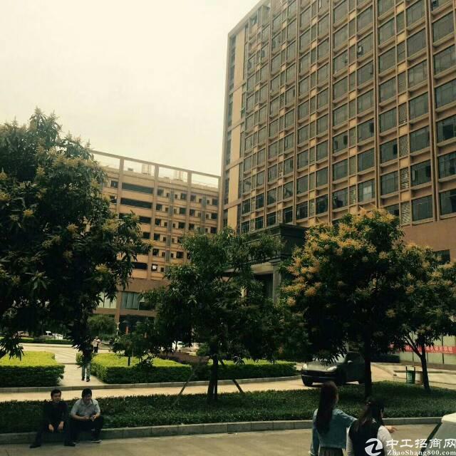 光明高新区一手业主直租厂房3000平米,200起分