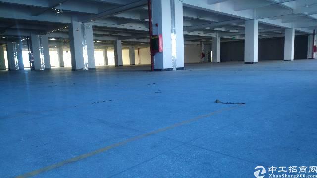 松岗107国道边新出二楼整层4500平方带两部电梯厂房出租