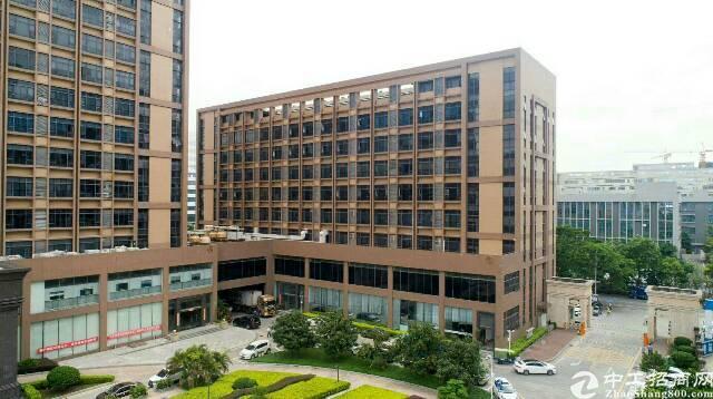 光明高新区一手业主直租厂房3000平米,200起分-图4