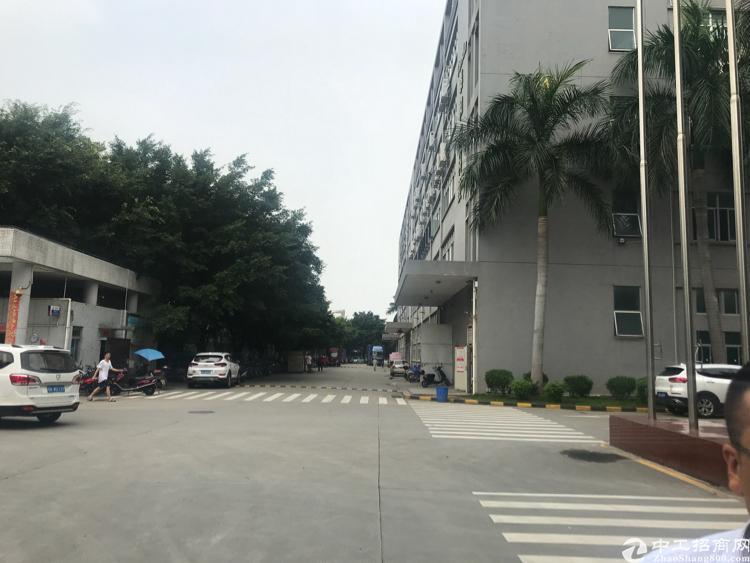 公明南光高速出口高新园区新出楼上1750平带精装修厂房招租