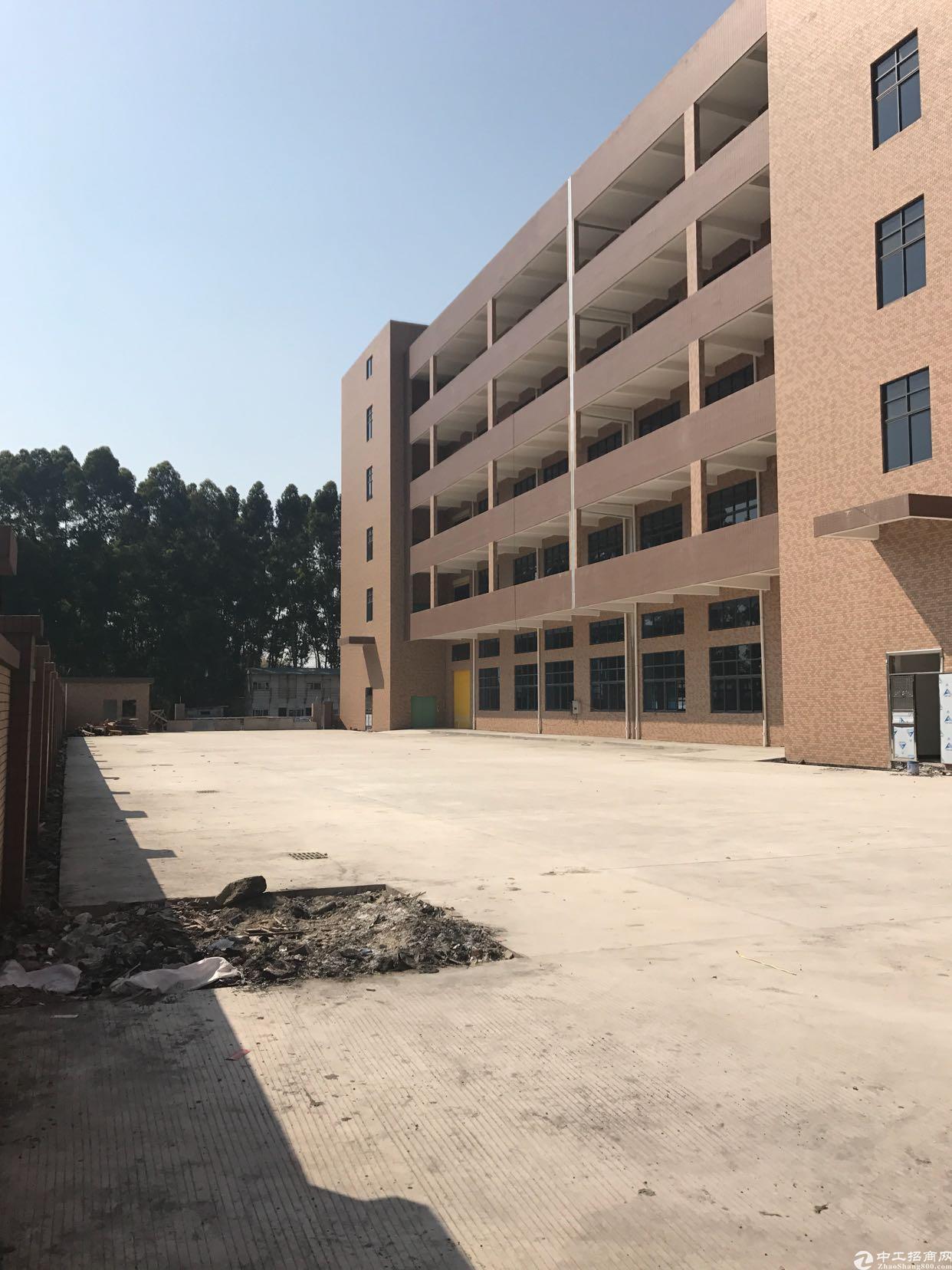 广州市增城区新塘镇国有证厂房出售
