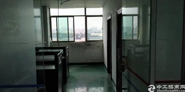 公明新出楼上带地坪漆厂房1300平