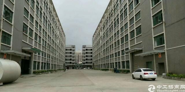 新塘镇40000平方标准厂房