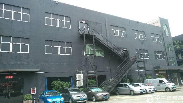 龙岗宝龙新出独院标准厂房楼上1280平豪华装修展厅招租