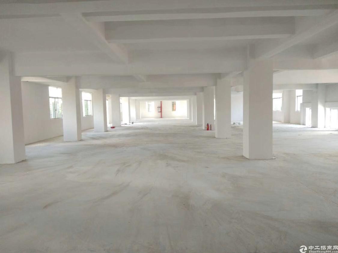 新出标准楼上1200平方米厂房