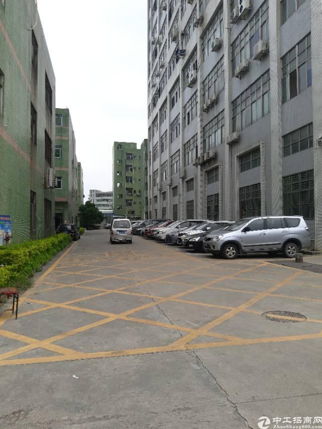 沙井新桥高速路口附近附近带装修办公室前台