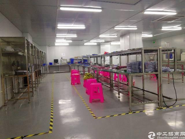 大浪商业中心附近新出精装修带无尘车间厂房500平米