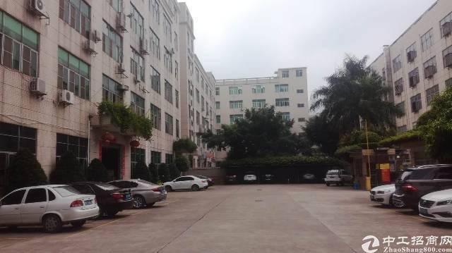 横岗 安良社区标准厂房1300平带精装修现际面积出租