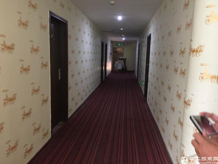 龙华清湖新出酒店4000平,可包租