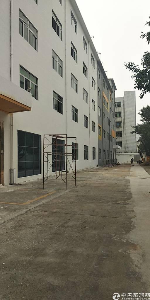 西乡三围独门独院厂房6500平方出租