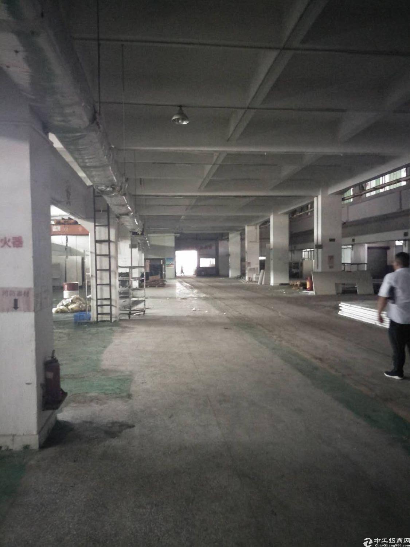 东莞市东城区新出标准厂房