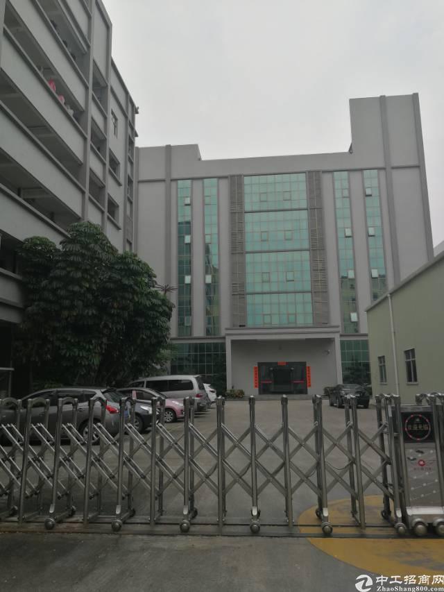 凤岗镇金凤凰新出带办公室、地坪漆、消防喷淋标准厂房2000平