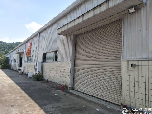 福永凤凰新出厂房招租