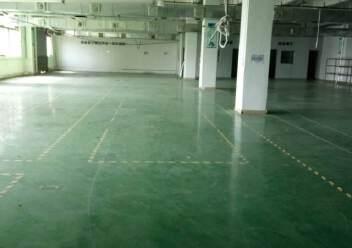 观澜大型工业园区原房东标准厂房三楼一整层出租1400平米。图片1