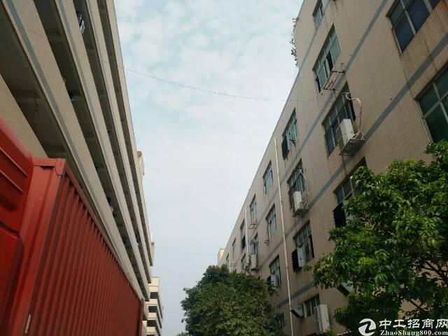 靠近福洲大道,交通方便,一楼非常适合做电商,贸易,仓库等等。