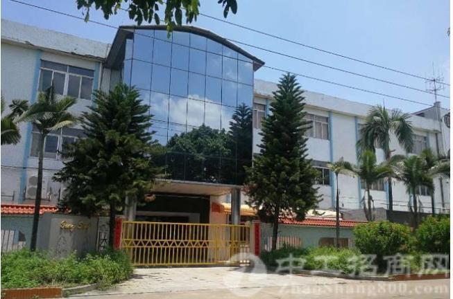 万江原房东1至3楼6500平方带现成办公装修出租