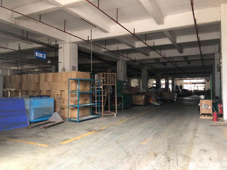 石岩北环路新出楼上3200平厂房招租-图5