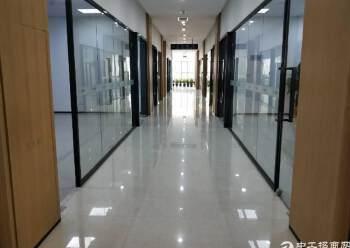 龙华汽车站对面3楼165平方,精装修图片1